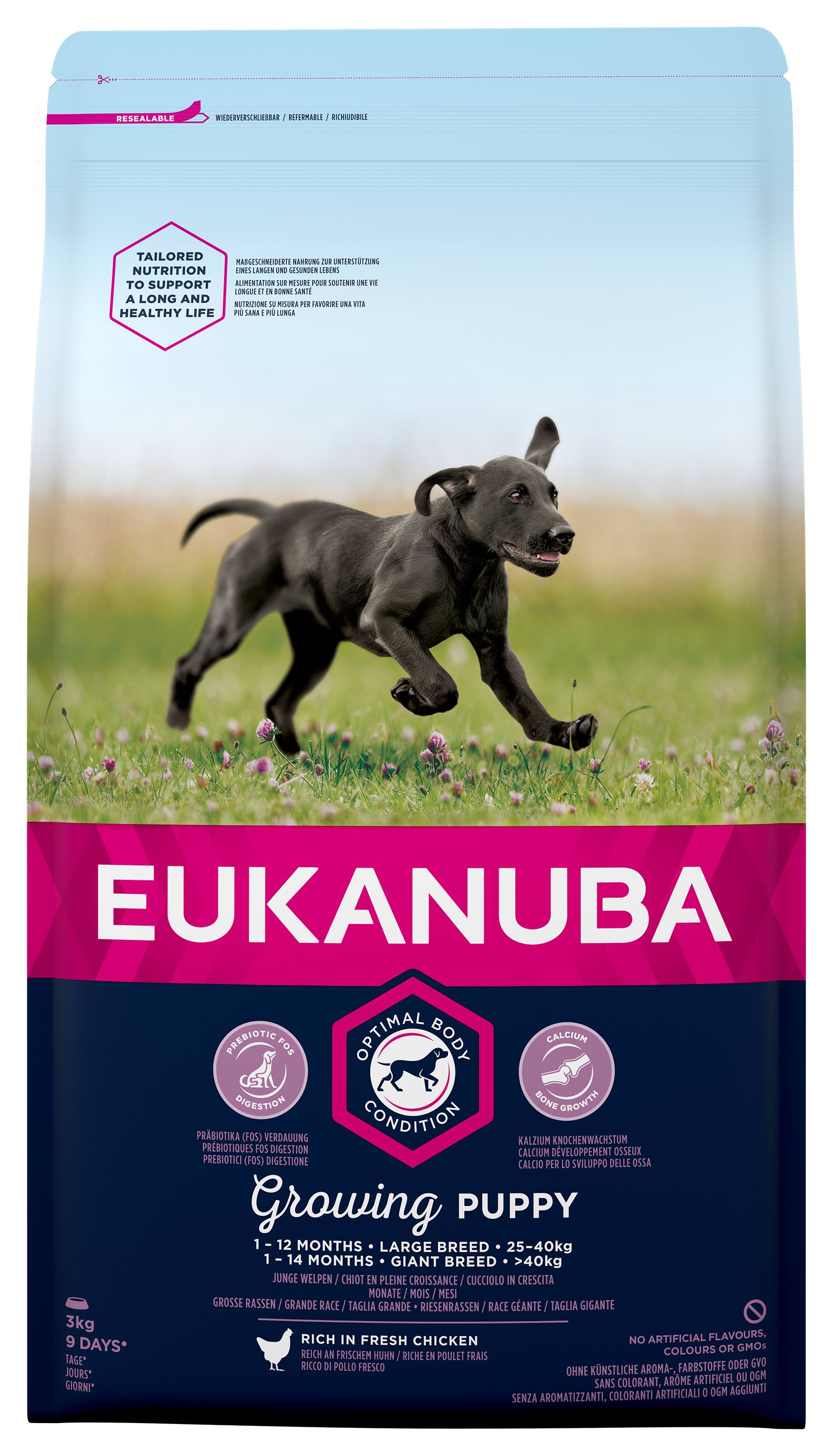 Eukanuba Puppy Large Breed